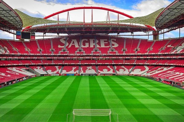 FPF não se opõe a efeito suspensivo de providência cautelar do Benfica