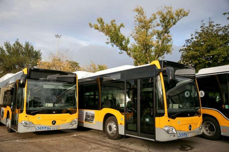 Covid-19: Coimbra reforça transportes públicos em 70% a partir de ...